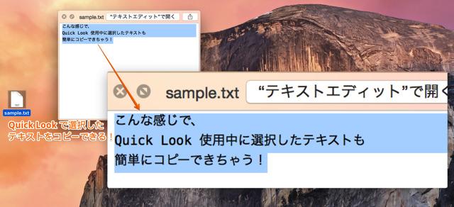 スペースキーで選択したテキストをコピーできるようになる