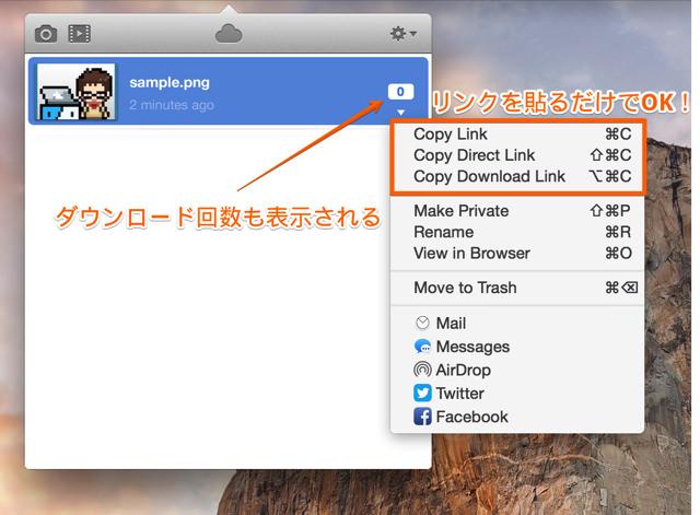 ファイル共有のリンク形式を詳細に設定することも可能