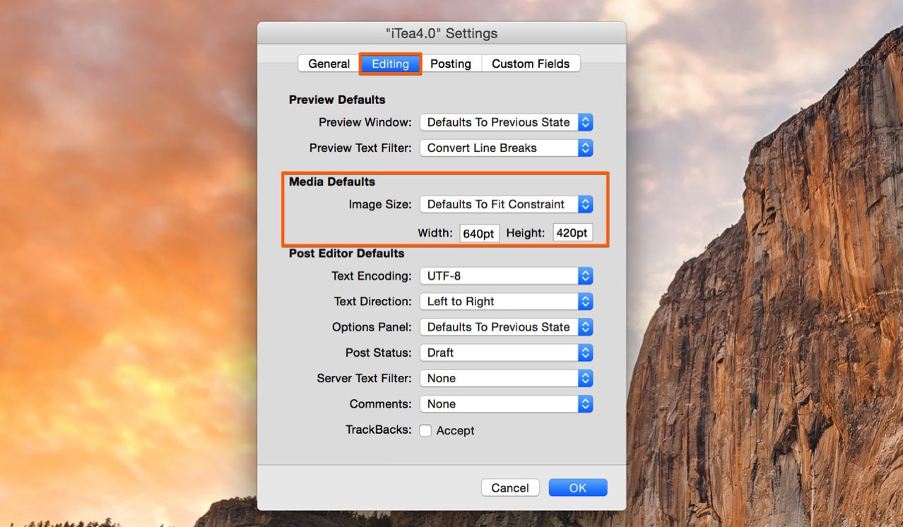 「Editing」にある「Media Default」で画像のリサイズ指定をする