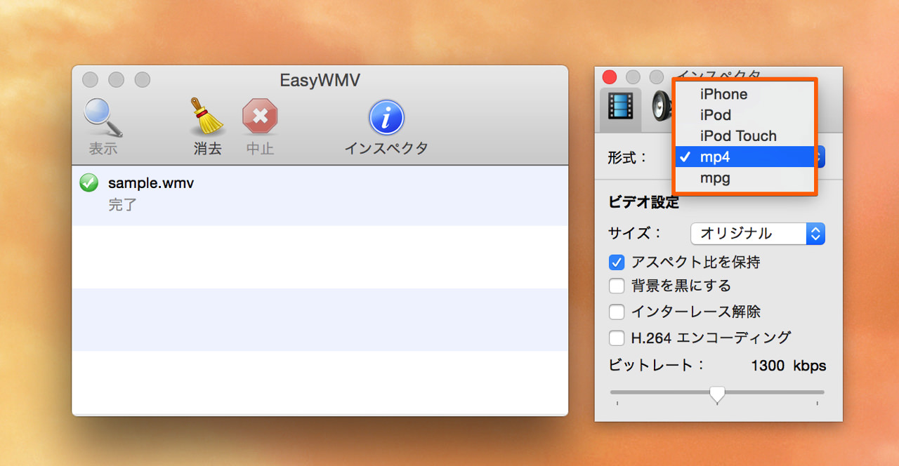 動画ファイルの形式はMP4やMPGなどを指定できる