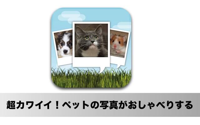 これは面白い!ペットの写真がしゃべりだすiPhoneアプリ「おしゃべりペット」