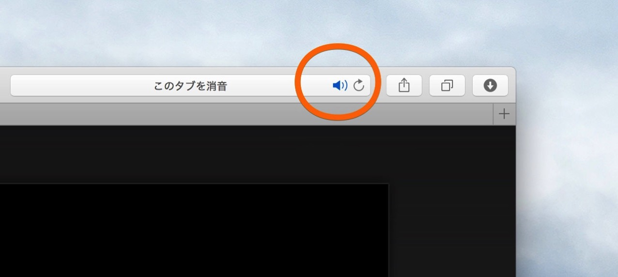 How to turn off sound emanating from tab of safari2