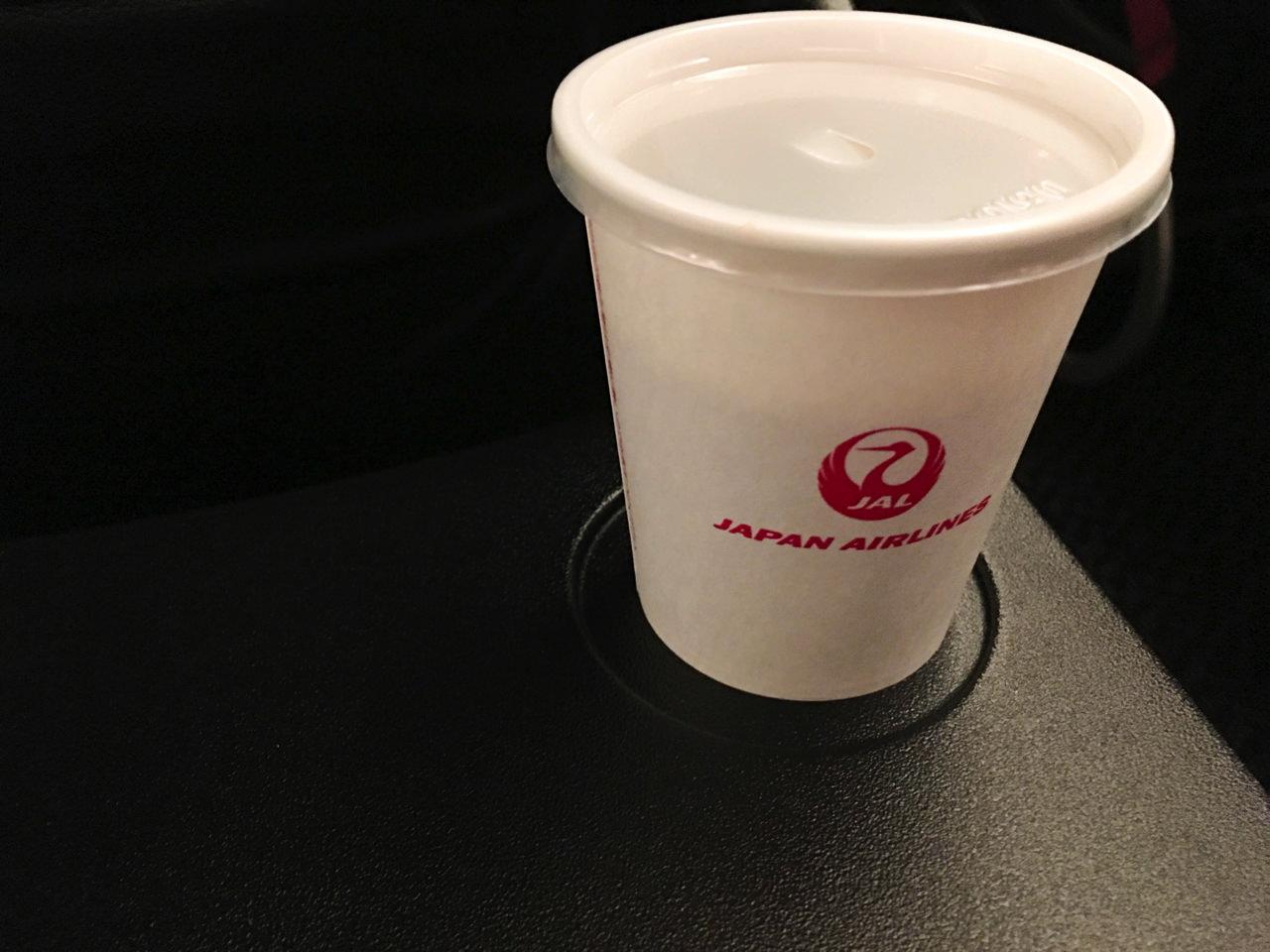 【日本航空】国内線「JAL SKY Wi-Fi」を使って機内でインターネットをしてみた