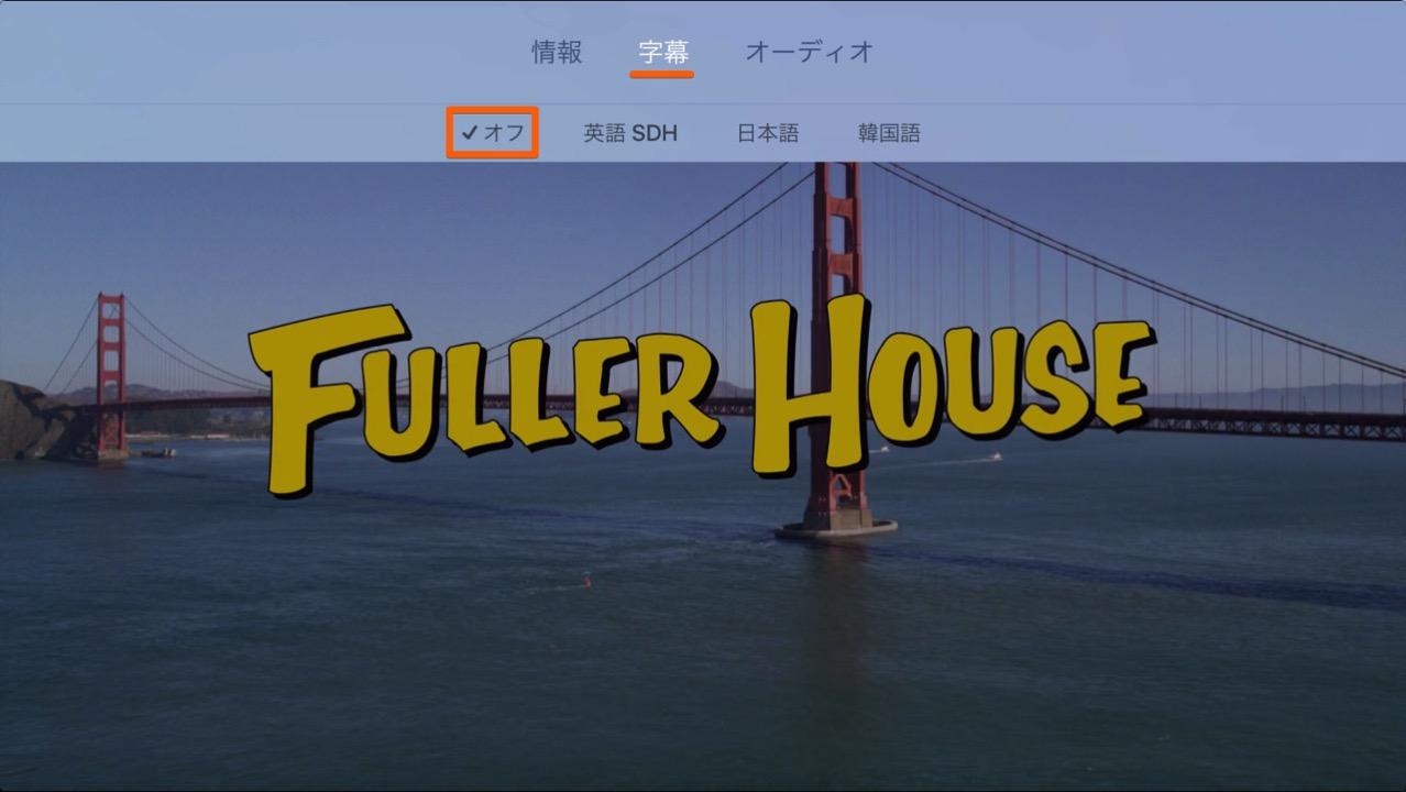 How to set up audio of netflix in japanese dubbing3