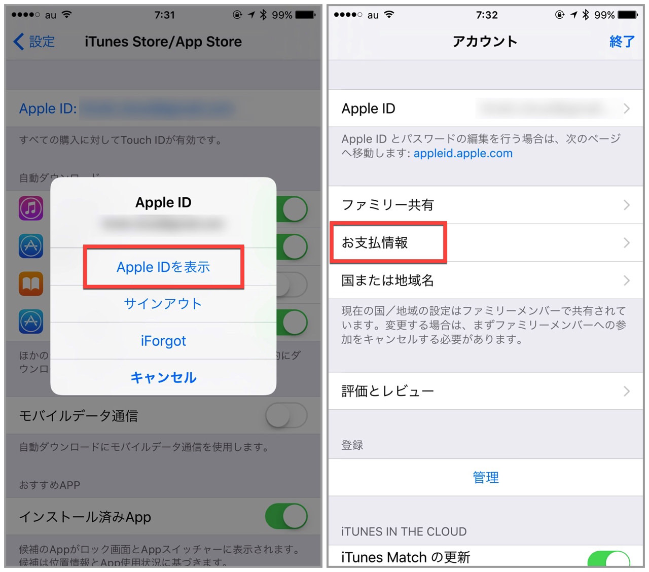 Apple corresponding carrier settlement kddi2
